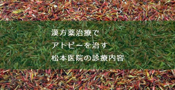 漢方薬治療でアトピーを治す松本医院の診療内容